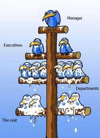 Corporate-triangle.jpg